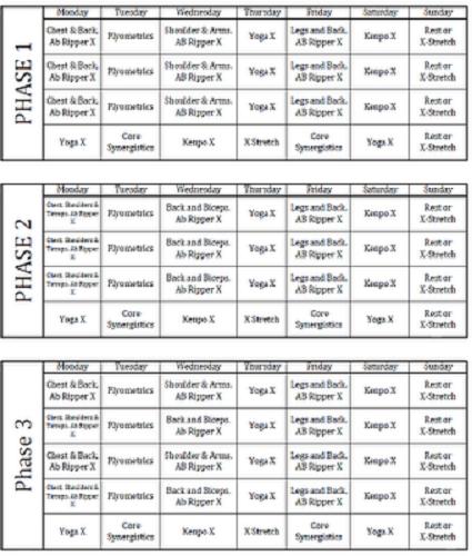 p90x google calendar schedule online dating profile bio examples pixnet
