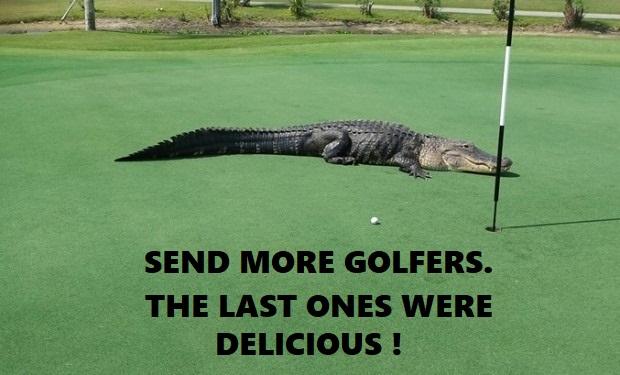 Name:  Gator 3-13 GOLFERS.jpg Views: 188 Size:  79.6 KB