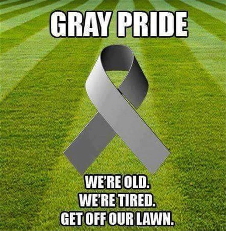 Name:  GRAY pride.jpg Views: 70 Size:  101.6 KB