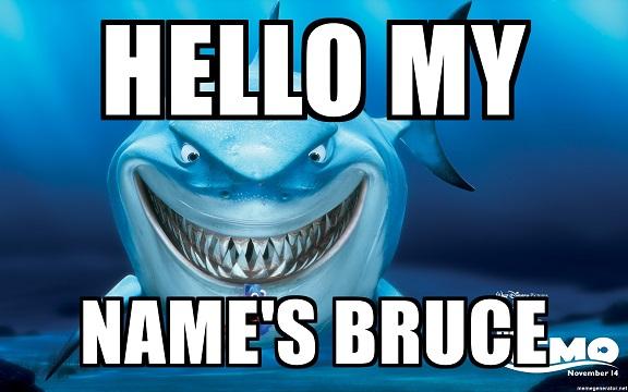 Name:  hello-my-names-bruce.jpg Views: 214 Size:  67.9 KB