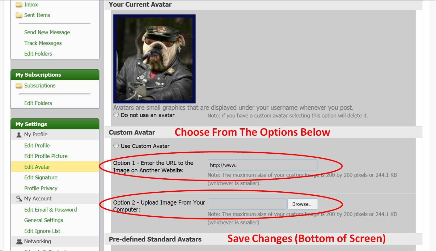 Name:  Change Avatar 03.jpg Views: 145 Size:  115.1 KB